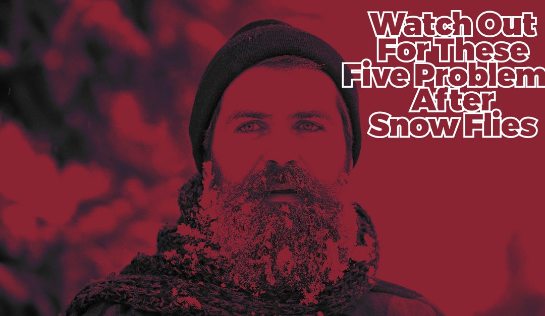 Watch Out For These Five Problems After Snow Flies
