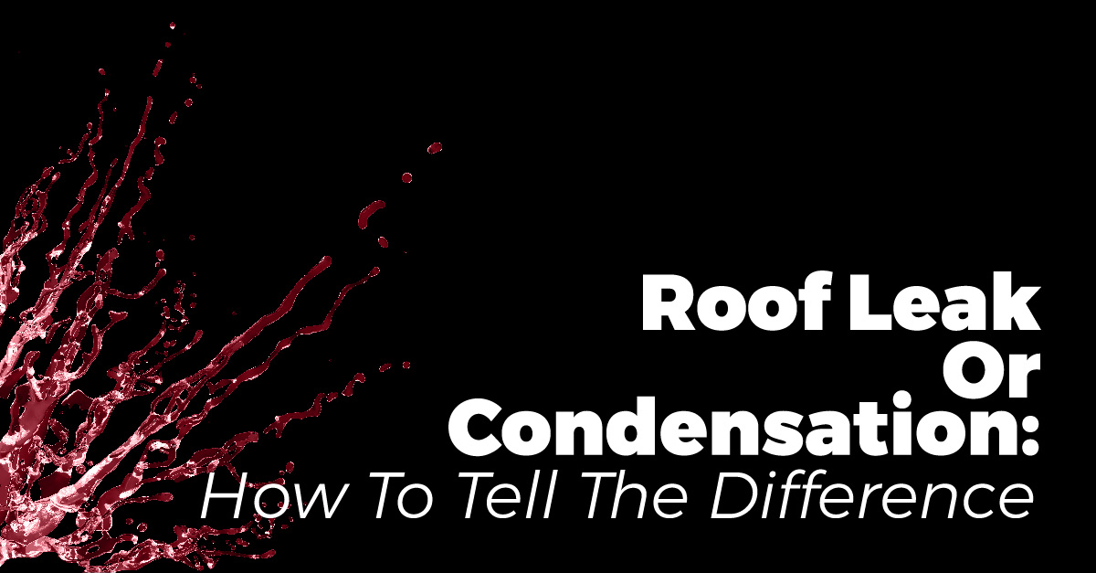 Roof Leak Or Condensation: How To Tell The Difference