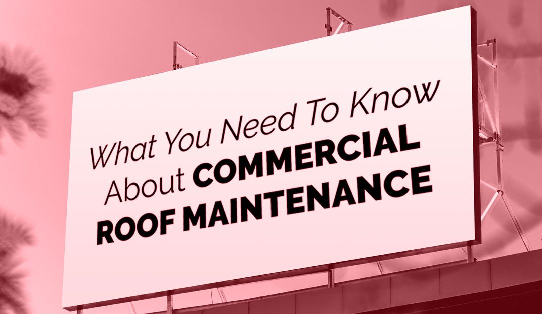 What You Need To Know About Commercial Roof Maintenance