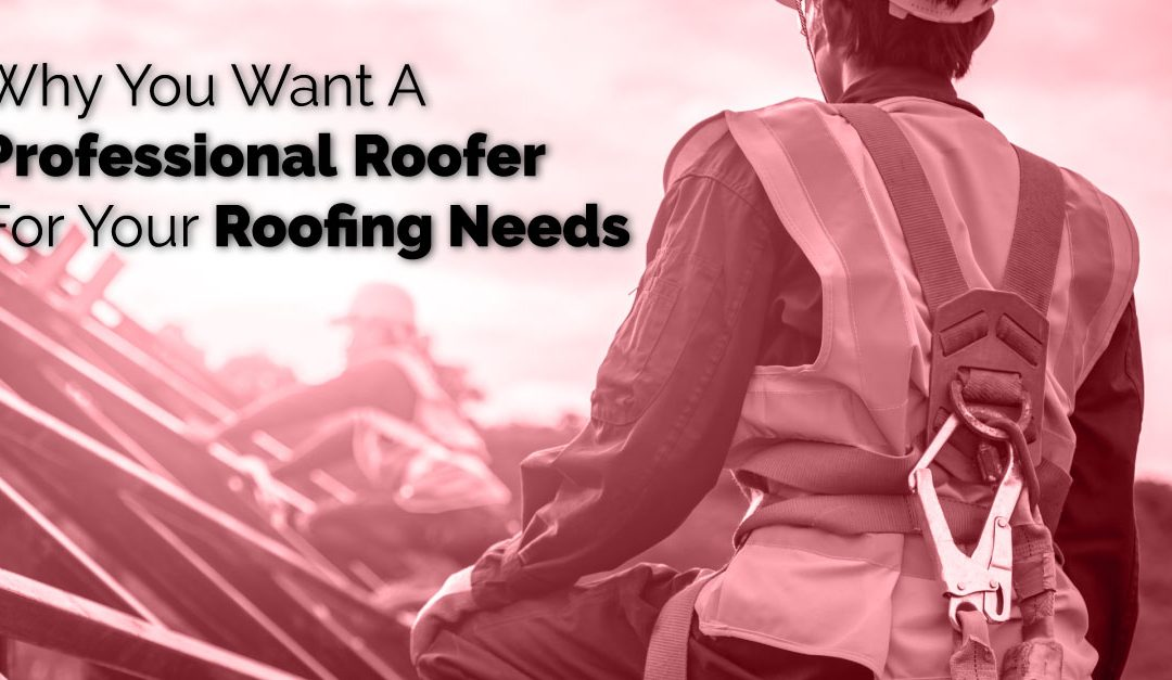 Why You Want A Professional Roofer For Your Roofing Needs