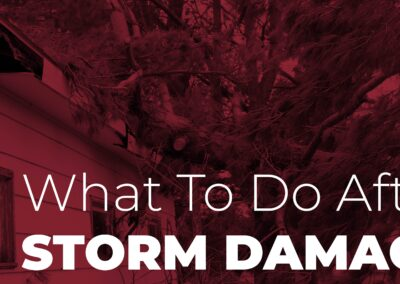 What To Do After Storm Damage