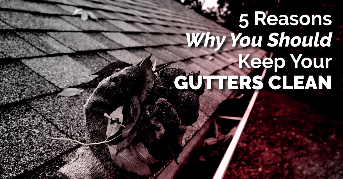 5 Reasons Why You Should Keep Your Gutters Clean